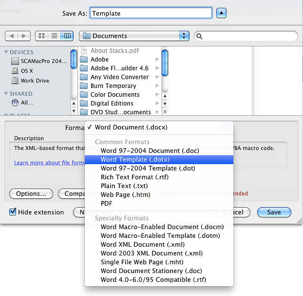 Screenshot of the template option in the save dialog box.