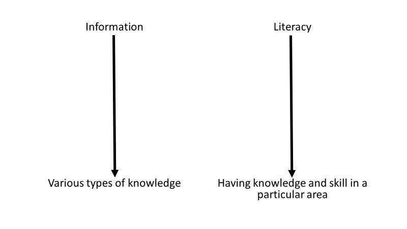 A diagram showing that information includes various type of knowledge and literacy includes having knowledge and skill in a particular area.