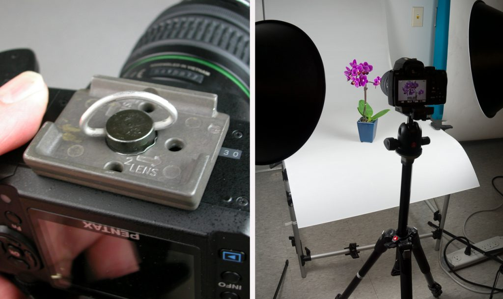 Close up of a quick-release tripod mount