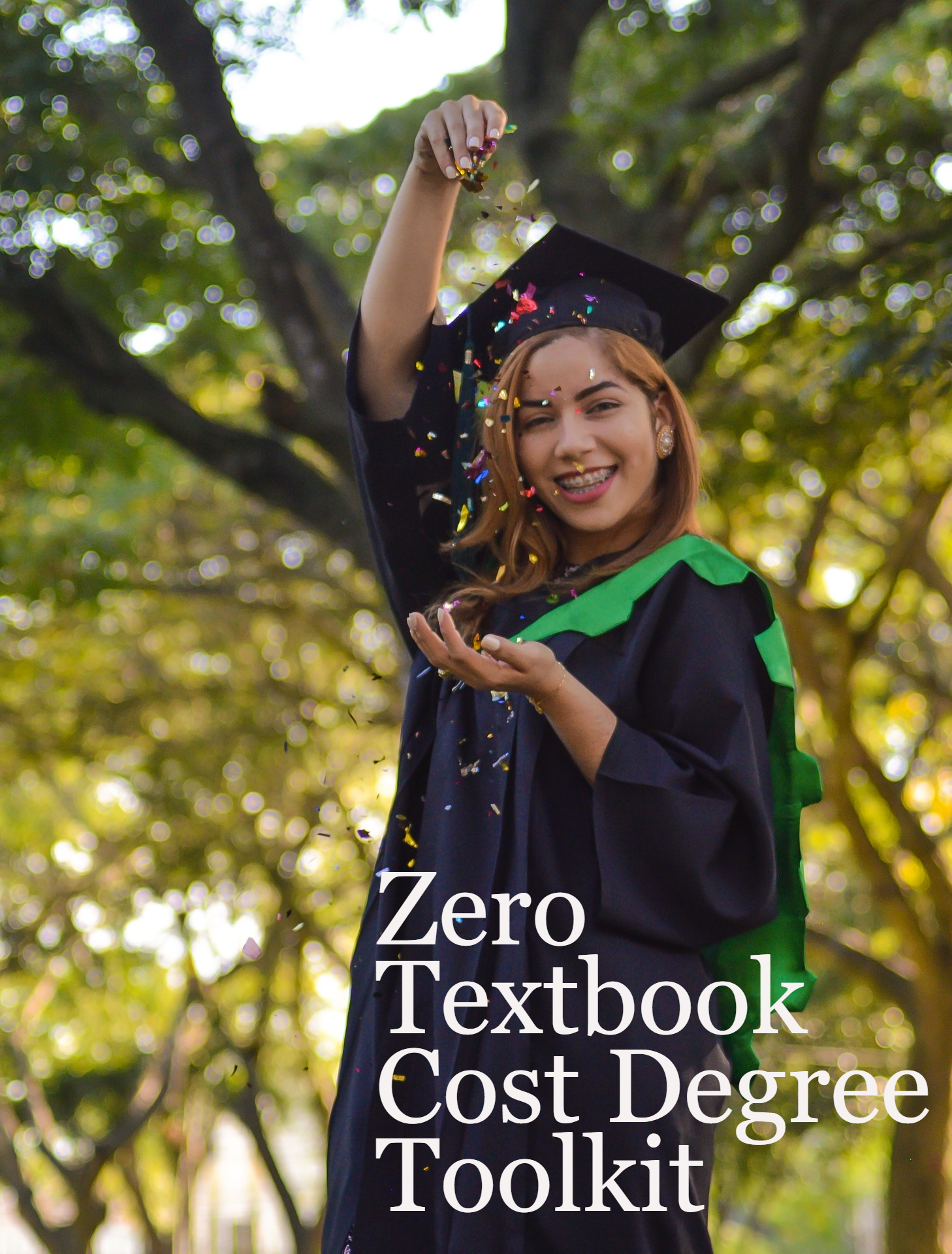 Cover image for Zero Textbook Cost Degree Toolkit
